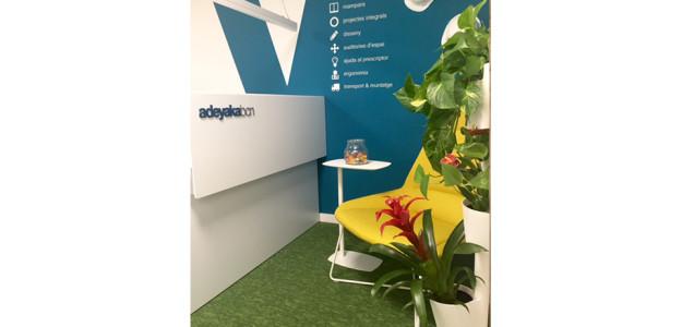 Jardines verticales citysens en tu oficina adeyaka bcn - Plantas para jardines verticales ...
