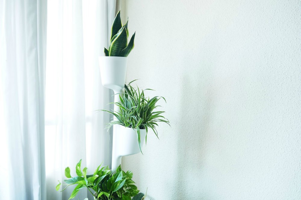 Plantas en la oficina con citysens