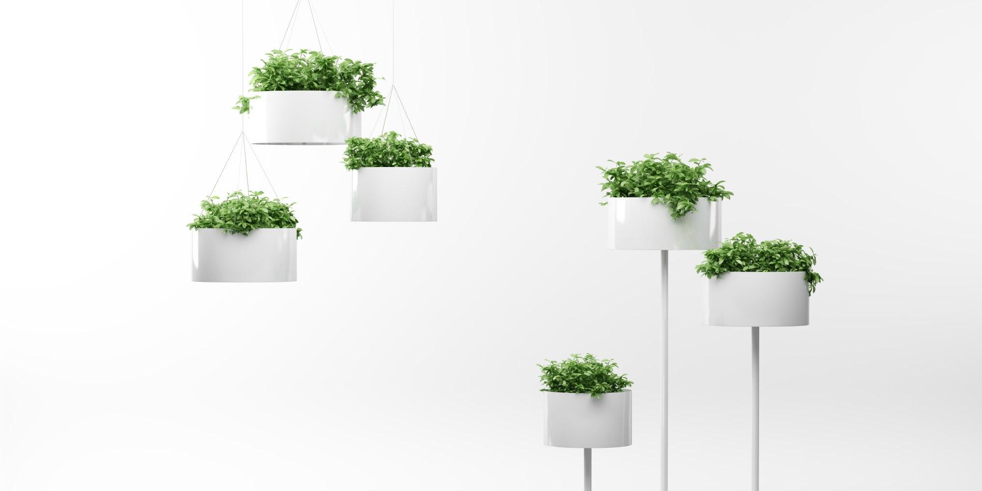 Complementos de oficina jardineras interiores adeyaka for Complementos oficina